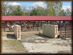 The Horse Wash and Rolling Area